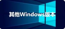 其他Windows版本